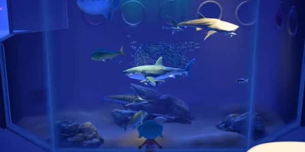 あつ森サメ値段一覧